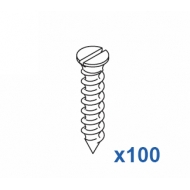 Special 1011/12 screw 12mm  (Pack Quantity 100)