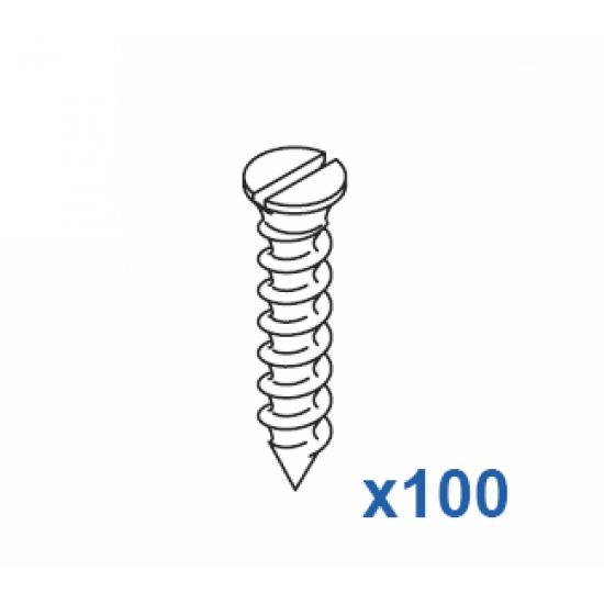 Special 1011/12 screw 12mm  (Pack Quantity 100)