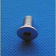 Machine screw M4X8 (Each)