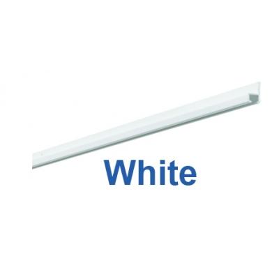 1021 White