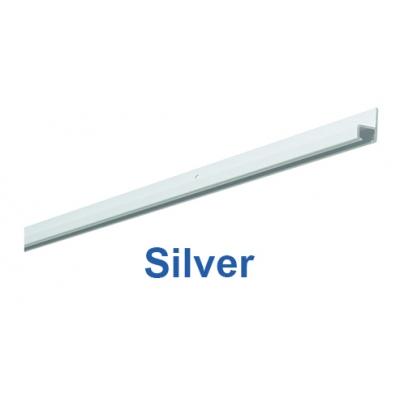 1021 Silver